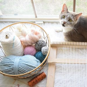 Cat with weaving tools and supplies